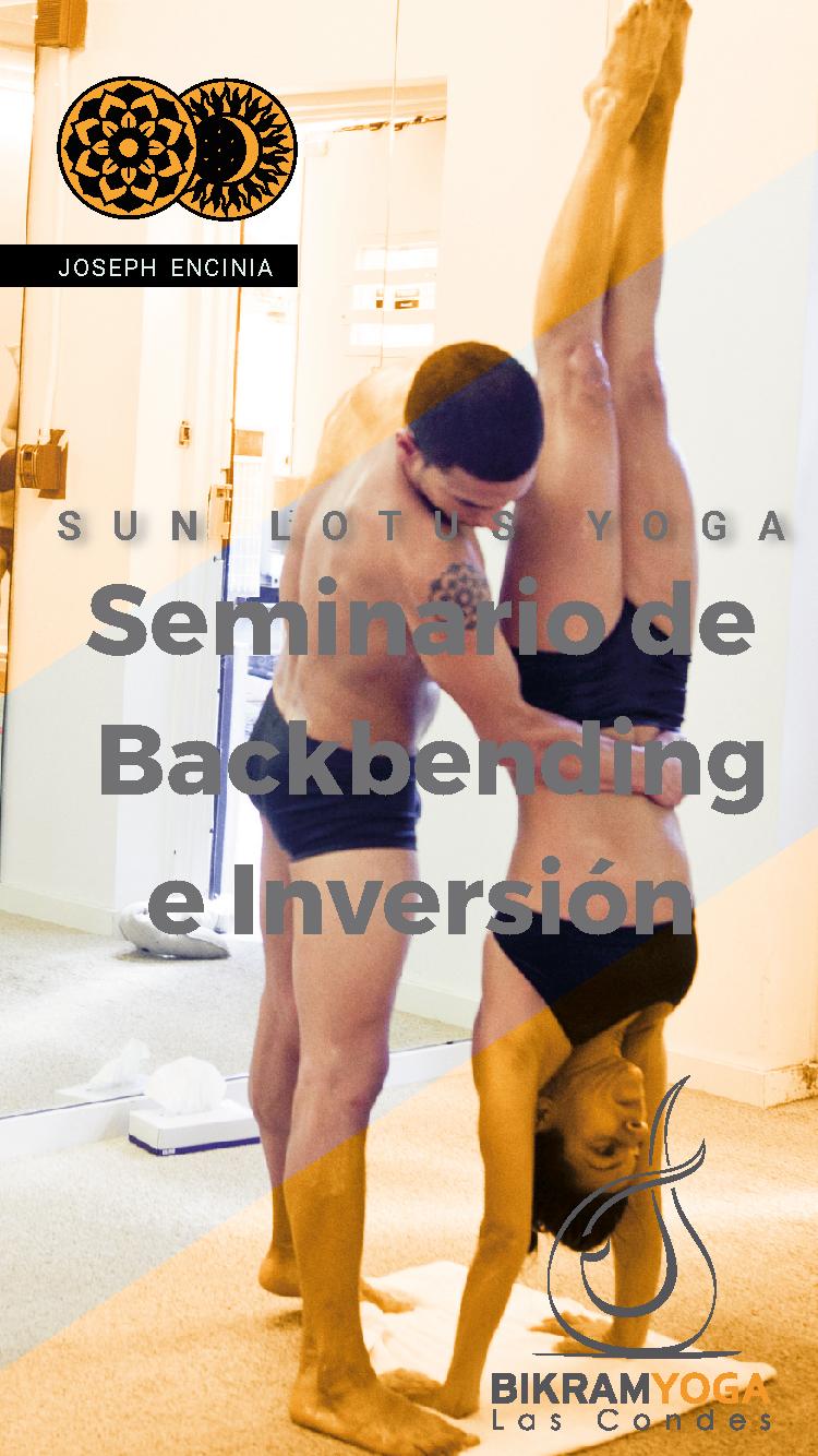 Santiago, Chile | June 7, 2019 | Backbending and Inversions Workshop